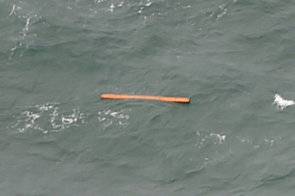 Найденные обломки самолета Фото: Bay Ismoyo / AFP